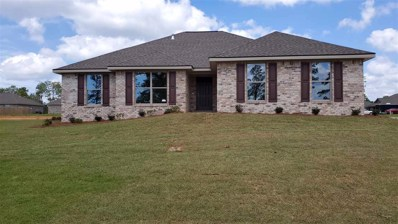 38067 Skidder Way, Bay Minette, AL 36507 - #: 290359