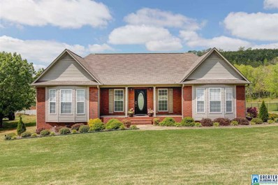 909 Ransome Dr, Oneonta, AL 35121 - MLS#: 814217