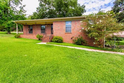 2400 2ND Pl NW, Center Point, AL 35215 - MLS#: 859980