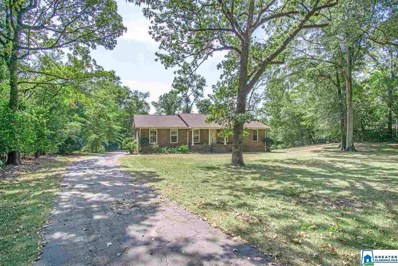 2917 Pump House Rd, Mountain Brook, AL 35243 - MLS#: 864996