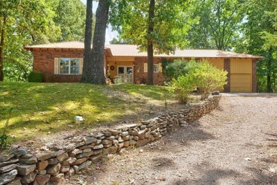 287 Center Road, Eureka Springs, AR 72631 - #: 1094433