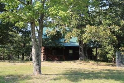 354 County Road 3402, Eureka Springs, AR 72632 - #: 1126116