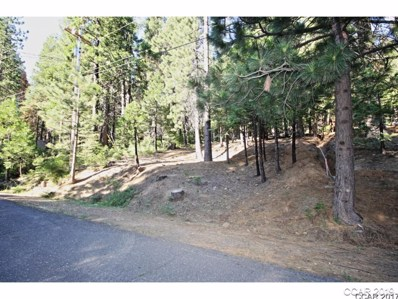 2478 Shoshone Drive UNIT 145, Camp Connell, CA 95223 - MLS#: 1701552