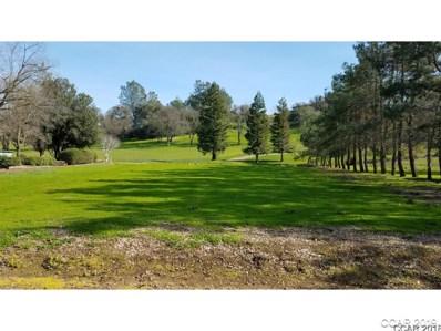 423 La Contenta Way UNIT 431, Valley Springs, CA 95252 - MLS#: 1800201