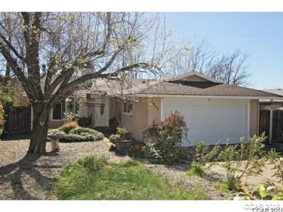 1855 Sugar Pine Way, Douglas Flat, CA 95229 - MLS#: 1800492