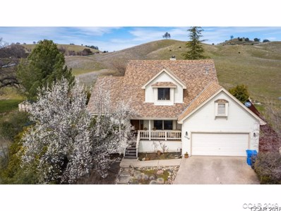1110 Suzanne Dr, Angels Camp, CA 95222 - MLS#: 1800520