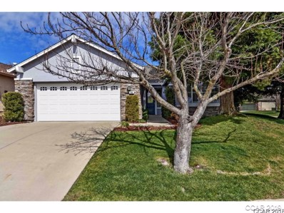 410 Mitchell Lake Ct, Copperopolis, CA 95228 - MLS#: 1800568