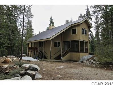 299 Salt Springs Trail UNIT 0\/00, Tamarack, CA 95223 - MLS#: 1800716