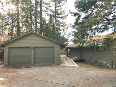 544 Larkspur Court, Murphys, CA 95247 - MLS#: 1800735