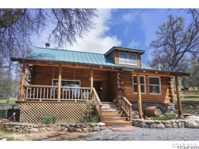 9413 Sheep Ranch Rd, Mountain Ranch, CA 95246 - MLS#: 1800742