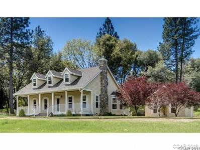 216 Mitchler St UNIT 9, Murphys, CA 95247 - MLS#: 1800819