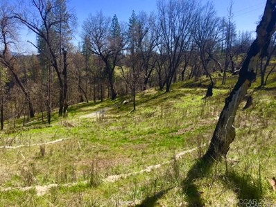 5766 Eagle View Drive UNIT 2\/55A, Mountain Ranch, CA 95246 - MLS#: 1800887