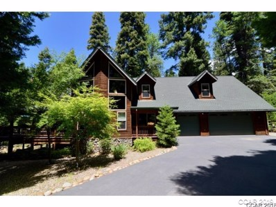 3149 Kenshaw Way UNIT 158, Dorrington, CA 95223 - MLS#: 1800890