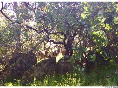 4868 Pueblo Trail UNIT 1933, Copperopolis, CA 95228 - MLS#: 1800913