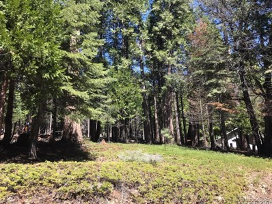 3300 Shoshone Drive UNIT 126, Camp Connell, CA 95223 - MLS#: 1800919