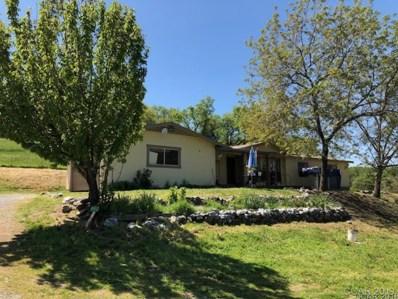 5289 Lombardi Dr, Mokelumne Hill, CA 95245 - MLS#: 1800960
