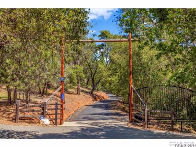 1600 Roaring Camp Road, Murphys, CA 95247 - MLS#: 1800989