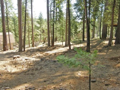 2036 Rainy Dr UNIT 425, Arnold, CA 95223 - MLS#: 1801018