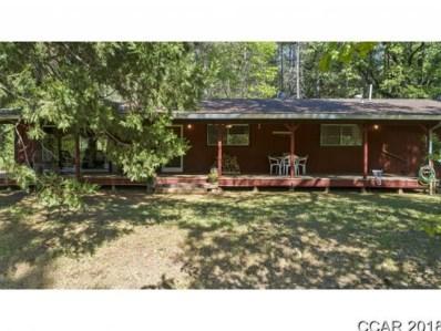 339 Black Oak Dr UNIT 116, Mokelumne Hill, CA 95245 - MLS#: 1801234