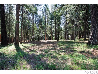 2107 5th Green Drive UNIT 2, Arnold, CA 95223 - MLS#: 1801460