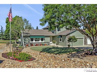 556 La Contenta Dr UNIT 382, Valley Springs, CA 95252 - MLS#: 1801503