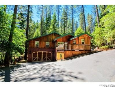 2338 Moran Road UNIT 98 \/ 1, Arnold, CA 95223 - MLS#: 1801561