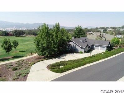 157 Smith Flat Rd UNIT 249, Angels Camp, CA 95222 - MLS#: 1801876