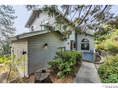 621 Forest Meadows Drive UNIT ., Murphys, CA 95247 - MLS#: 1801923