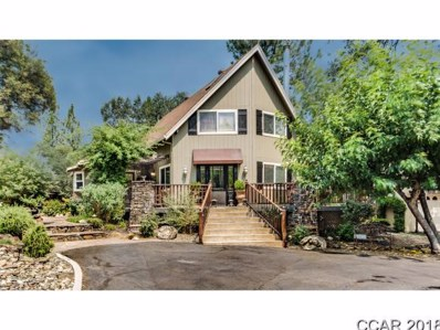 735 Anrey Court UNIT 11, Murphys, CA 95247 - MLS#: 1801948