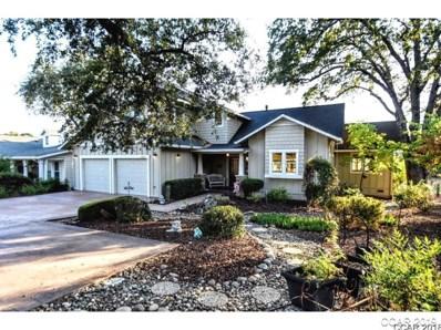 498 Selkirk Ranch Road UNIT 11\/1, Angels Camp, CA 95222 - MLS#: 1801951