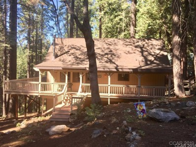 3651 Shoshone Dr UNIT 47\/4, Camp Connell, CA 95223 - MLS#: 1801979