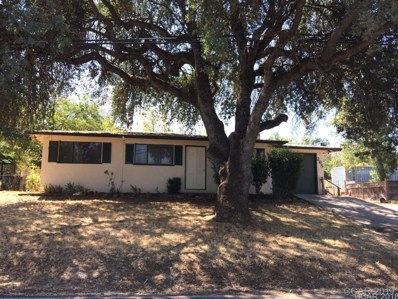 265 Oak UNIT 20, San Andreas, CA 95249 - MLS#: 1801998