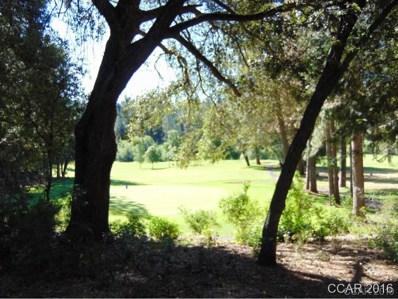 Sandalwood Drive UNIT 2B20, Murphys, CA 95247 - MLS#: 1802041