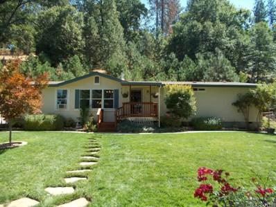 1086 Dorothy Way UNIT ., West Point, CA 95255 - MLS#: 1802102