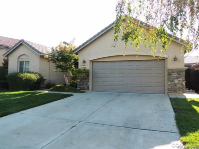 127 Gold Dust Dr UNIT 140, Valley Springs, CA 95252 - MLS#: 1802198
