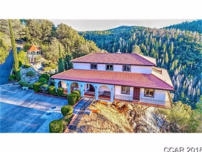 2306 Woodhouse Mine Rd. UNIT 2306, West Point, CA 95255 - MLS#: 1802270