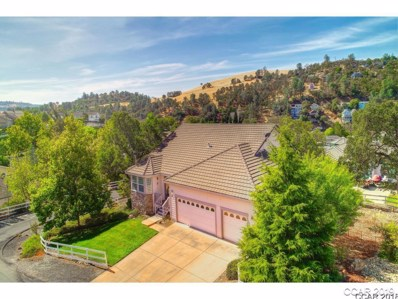 6250 Bluff View Rd UNIT 60, Copperopolis, CA 95228 - MLS#: 1802309