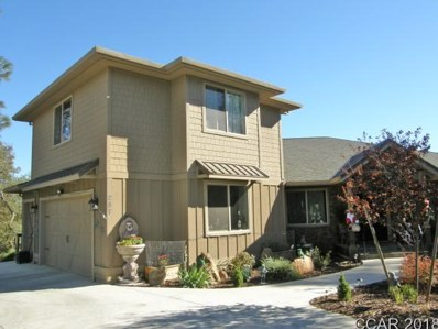 287 Mary Belle Way UNIT 313, Angels Camp, CA 95222 - MLS#: 1802520