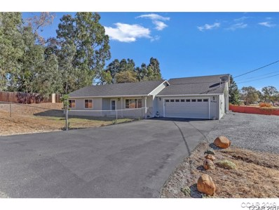 4050 Brooks Road UNIT 1655, Valley Springs, CA 95252 - MLS#: 1802546