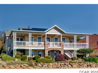 194 Smith Flat Road UNIT 259, Angels Camp, CA 95222 - MLS#: 1802669