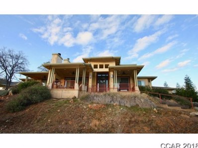 248 Blair Mine Rd UNIT 411, Angels Camp, CA 95222 - MLS#: 1802741