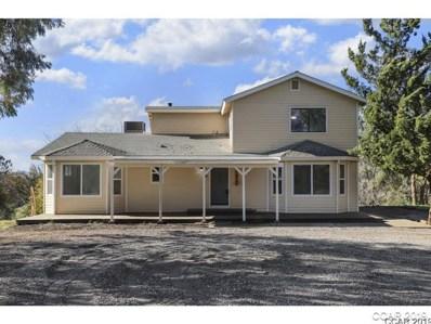 2239 Willow Creek Rd UNIT 63, San Andreas, CA 95249 - MLS#: 1900436