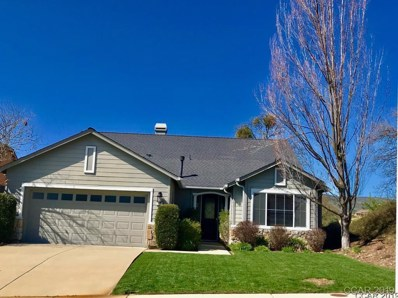 485 Mitchell Lake Ct UNIT 141, Copperopolis, CA 95228 - MLS#: 1900510