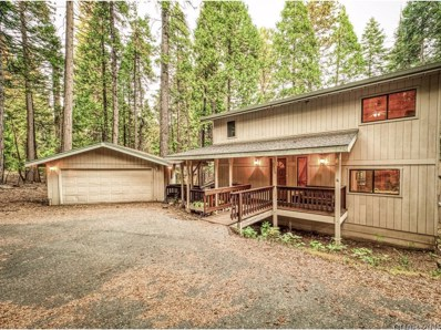 2920 Ute Pl UNIT 156, Dorrington, CA 95223 - MLS#: 1901281