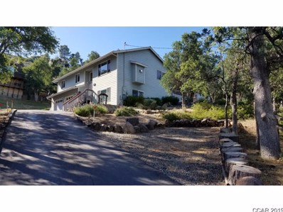 20800 W Willow Springs Dr UNIT 63, Soulsbyville, CA 95372 - #: 1901403