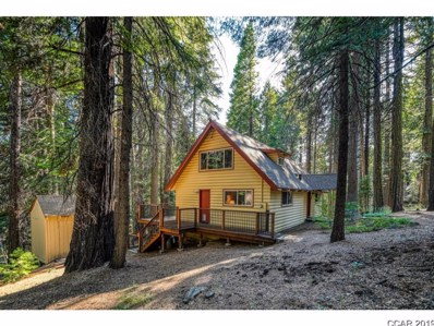 3956 The Jug Handle UNIT 216, Dorrington, CA 95223 - MLS#: 1901762