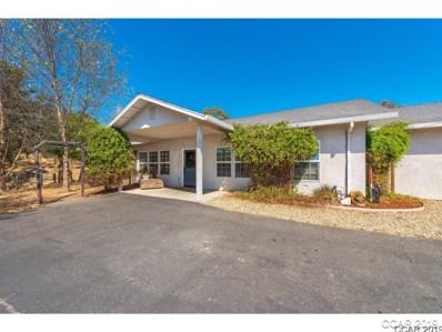 4125 Paolini UNIT 59, Valley Springs, CA 95252 - MLS#: 1901898