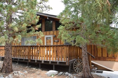 2320 E Canyon Drive, Wrightwood, CA 92397 - MLS#: 490066