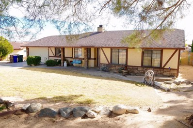 26621 Lakeview Drive, Helendale, CA 92342 - MLS#: 493232