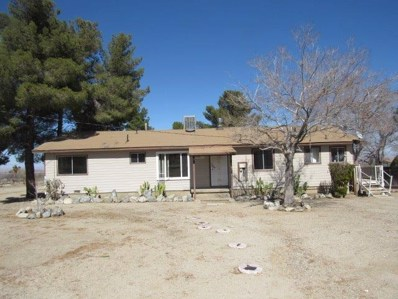 32136 Largo Vista Road, Llano, CA 93544 - MLS#: 496447